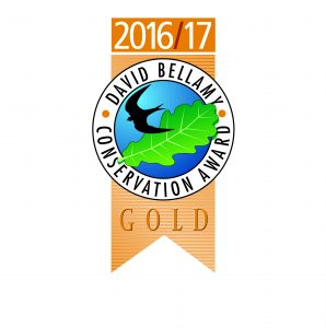 David Bellamy Gold Award 2016/17