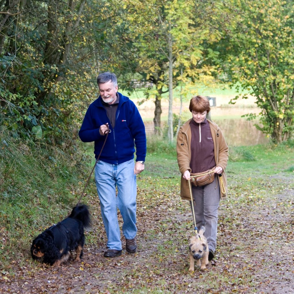 Dog friendly holiday park in Herefordshire